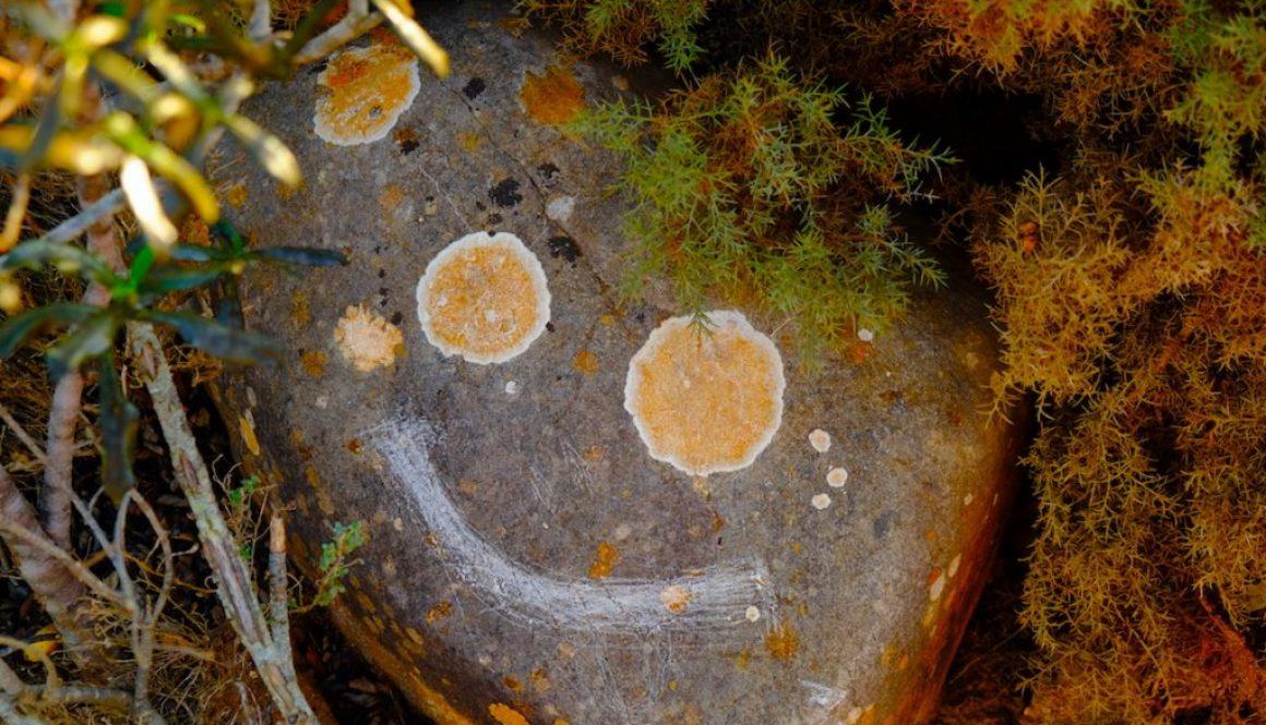 LOST TRACK Reiseblog Portugal Algarve Hippie Gipsy Vanlife Barranco Happy Smile